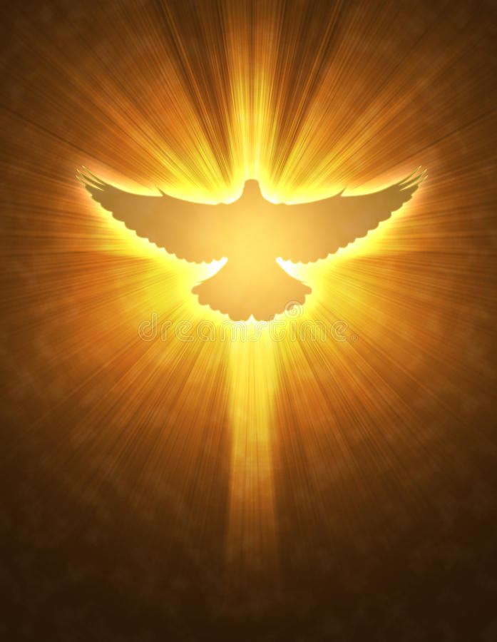 Shining dove with rays on a dark royalty free illustration