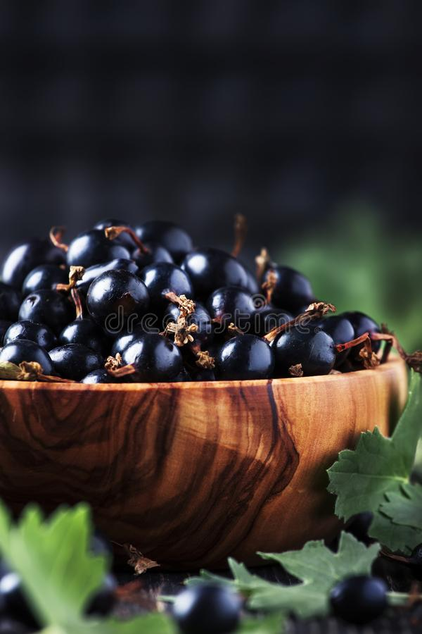 Shining fresh black currants in wooden bowls, summer harvesting, black kitchen table background, place for text, selective focus. Shining fresh black currants in royalty free stock image