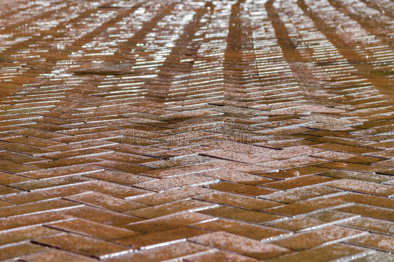 Shining maroon tiled stone decorative pavement. Wet after rain royalty free stock photo