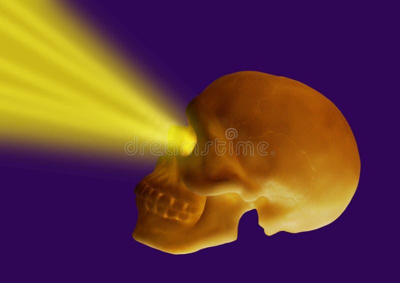 Download Shining skull stock image. Image of light, teeth, fear - 16203281