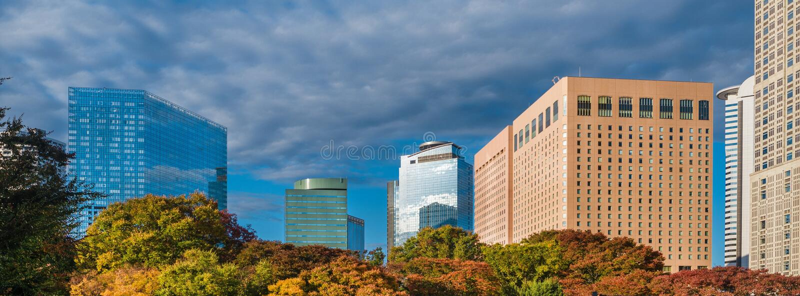 Shinjuku district in Tokyo royalty free stock photos