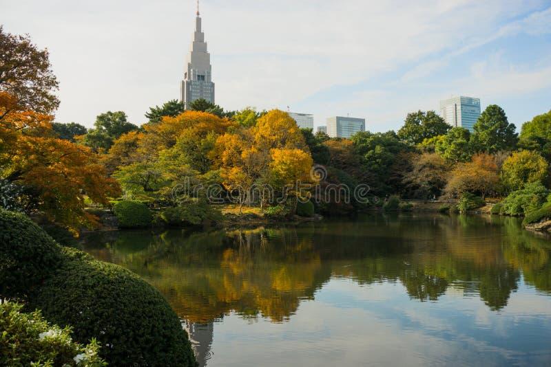 Shinjuku Gyoen Garden royalty free stock photo
