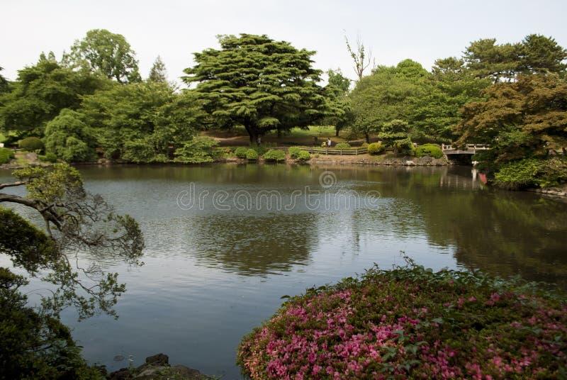Shinjuku Gyoen National Garden. In Tokyo, Japan stock photography