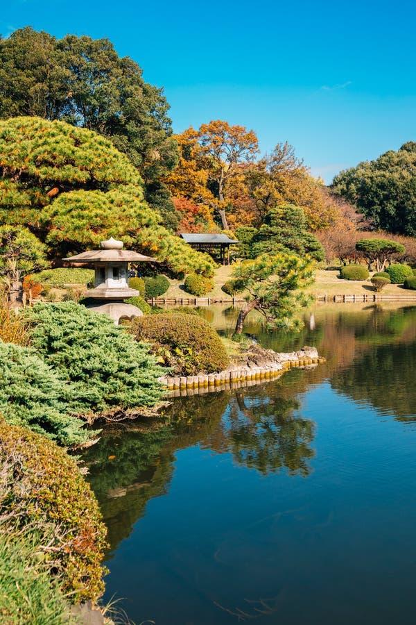 Shinjuku Gyoen park at autumn at Tokyo, Japan. Shinjuku Gyoen park at autumn in Tokyo, Japan stock image