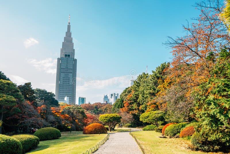 Shinjuku Gyoen park at autumn at Tokyo, Japan stock images