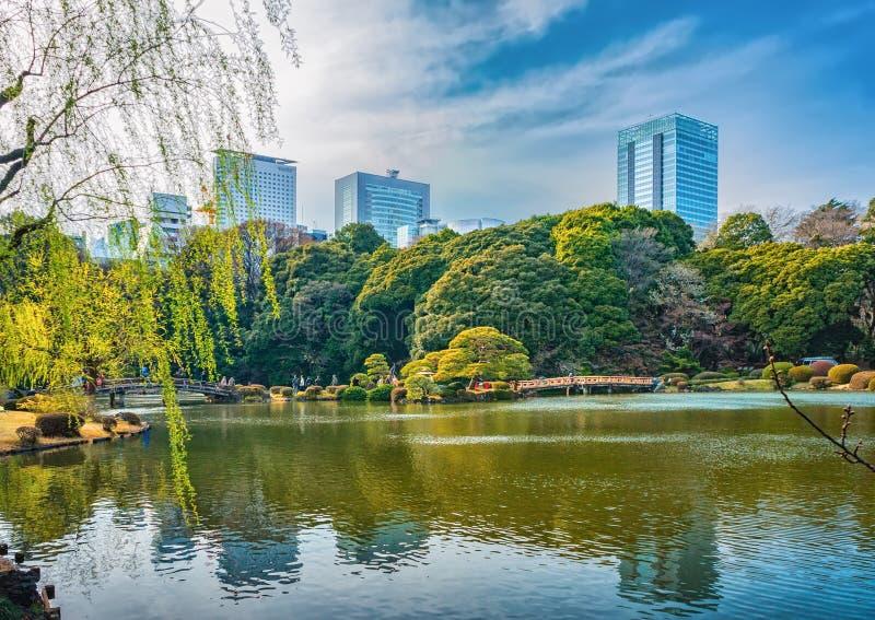 Shinjuku Gyoen Park, Tokyo, Japan in spring. TOKYO, JAPAN - MARCH 29, 2016: Springtime in Shinjuku Gyoen Park - Tokyo Japan stock images