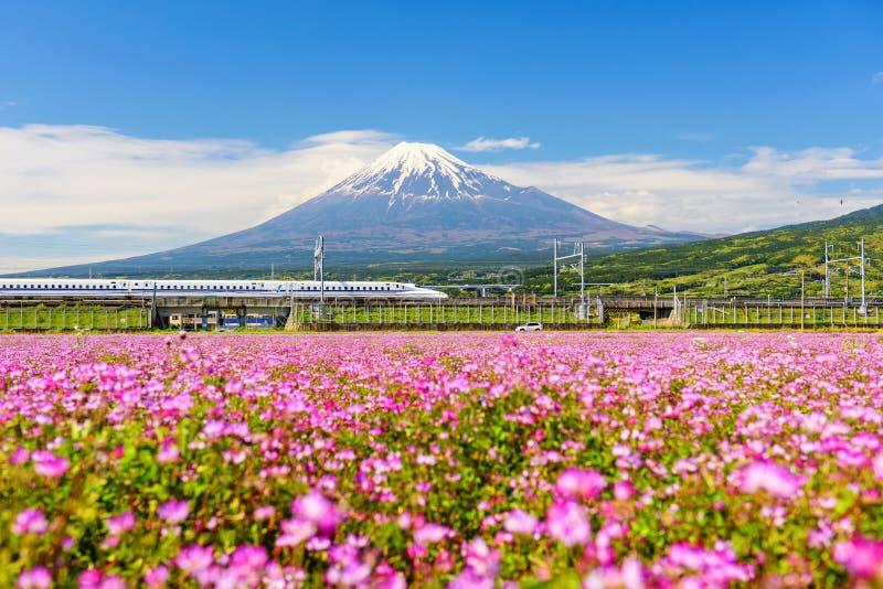 Shinkansen и автомобиль, который побежали через Mt fuji стоковая фотография rf