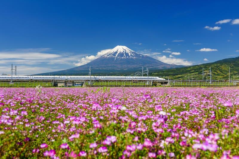 Shinkansentrein door Onderstel Fuji in de lente royalty-vrije stock foto's