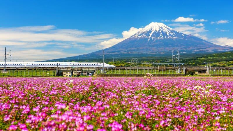 Shinkanzen eller kuldrev med Mt fuji royaltyfria bilder