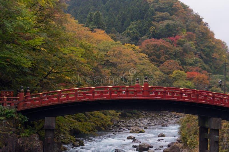Shinkyo röd bro i höstskog och vattenström fotografering för bildbyråer
