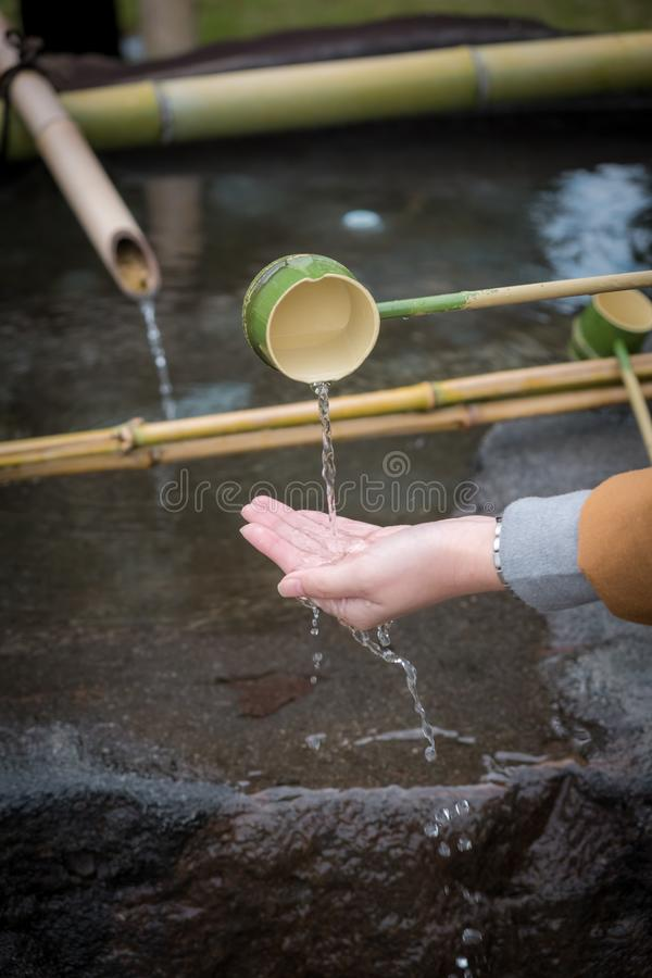 The Shinto Omairi cleansing ceremony by using water in bamboo scoop before enter to temple in Japan. stock images