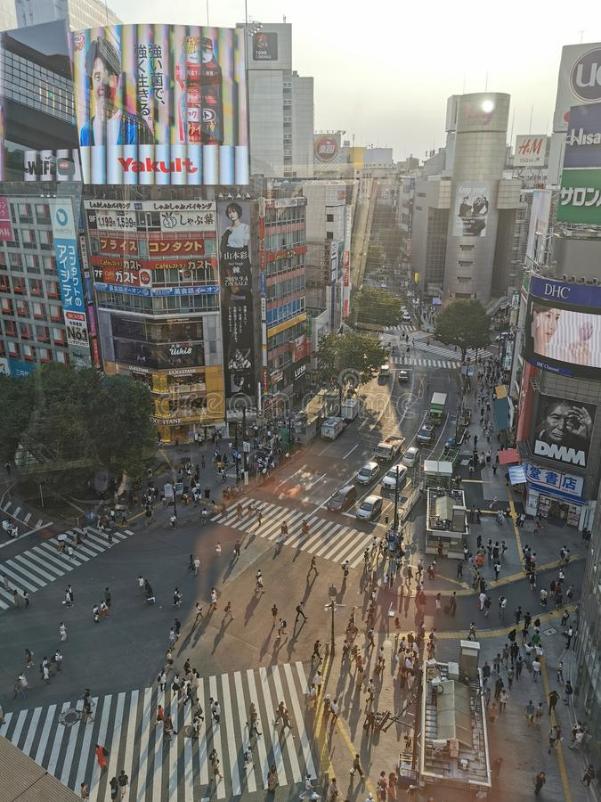 Shinuya crosswalk royalty-vrije stock fotografie