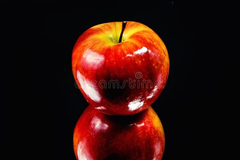 Shiny Apple Stock Photography