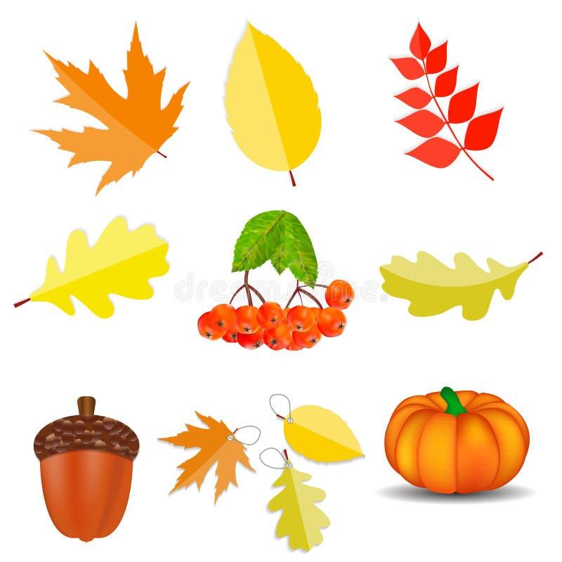 Shiny Autumn Natural Icons Vector Illustration stock illustration