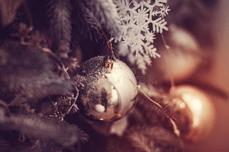Shiny ball on the Christmas tree. Red shiny toy on the Christmas tree, fairy-tale mood royalty free stock photography