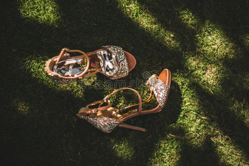 Shiny, glamorous, fashionable women high heel shoes royalty free stock photography