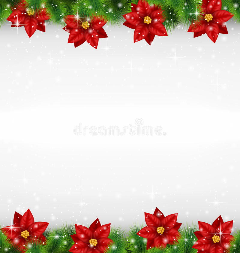 Shiny green pine branches like frame with flower of poinsettia i vector illustration