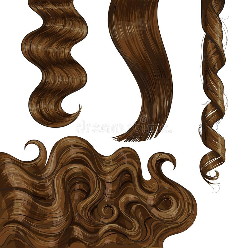 Shiny long brown, fair straight and wavy hair curls. Set of shiny long brown, fair straight and wavy hair curls, sketch style vector illustration isolated on stock illustration