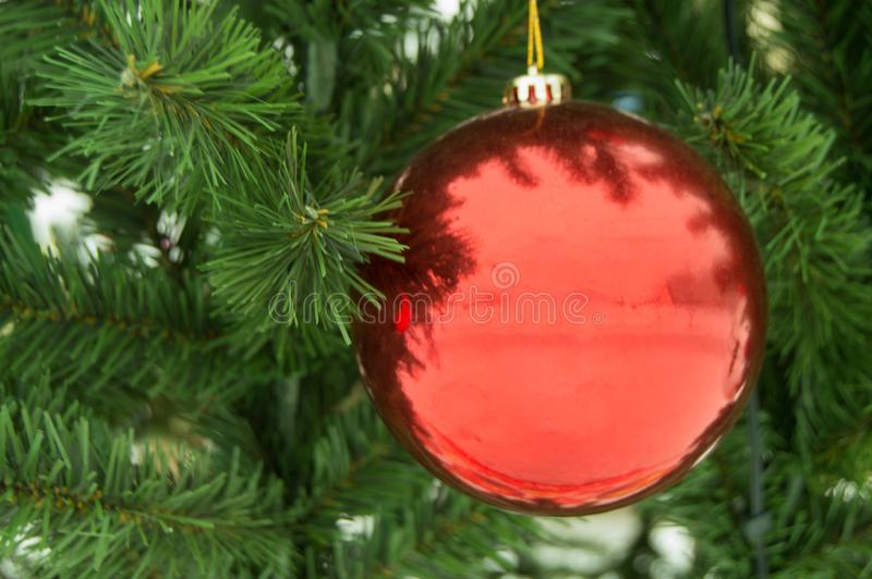 Shiny red ball on artificial Christmas tree, holiday decoration, new year background royalty free stock photos