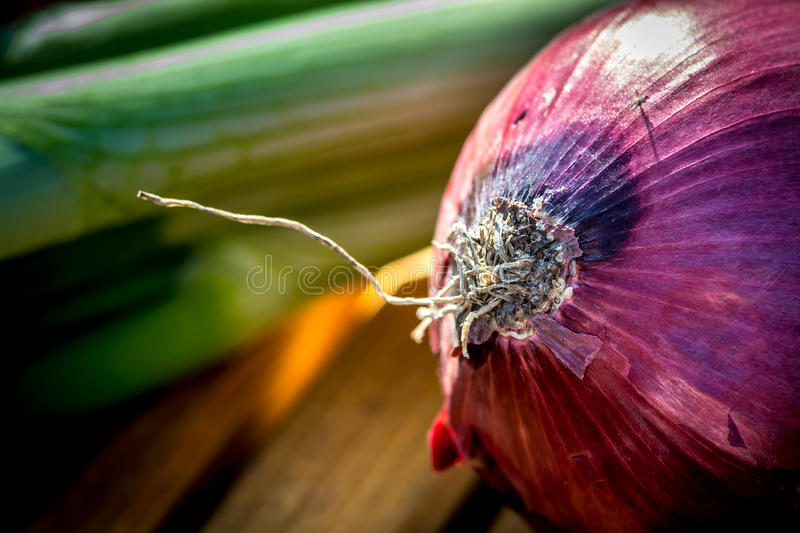 Shiny red onion with leek on a cutting board royalty free stock photography