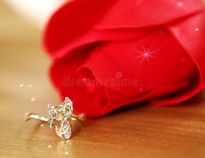 The shiny ring to the lovely her. royalty free stock image