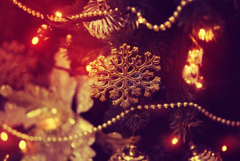 Shiny toy on the Christmas tree. Red shiny toy on the Christmas tree, fairy-tale mood royalty free stock photo