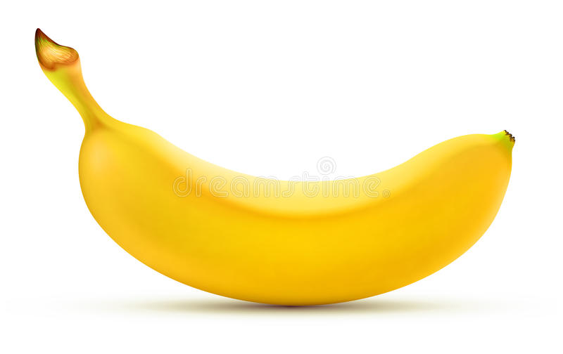 Shiny yellow banana vector illustration