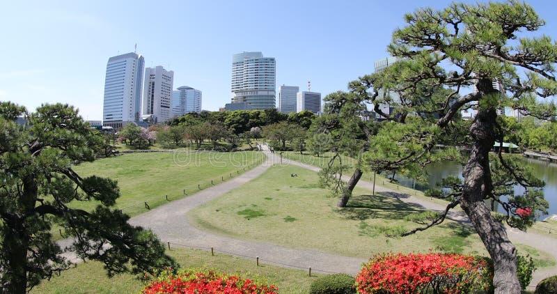 Shiodome buildings in Hamarikyu Gardens. Hamarikyu Gardens, Tokyo, Sumida River, Chuo district, Japan. Oriental japanese garden during Hanami. The Hama Rikyu is stock photos