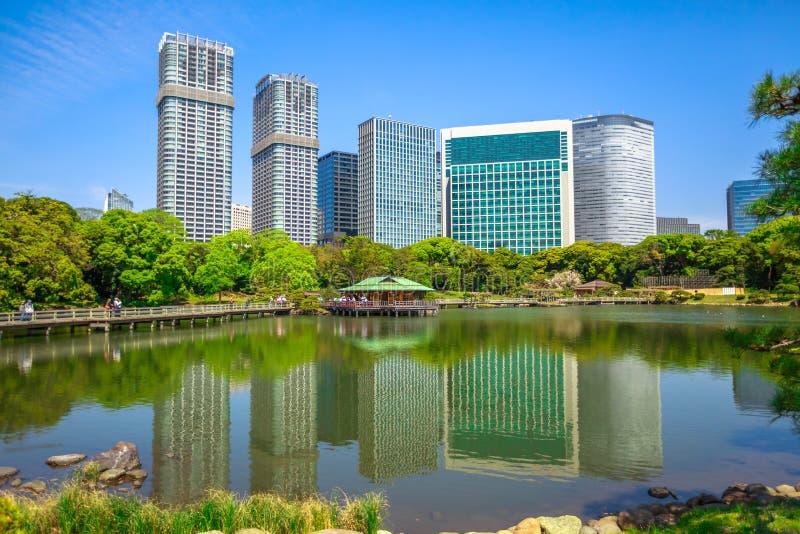 Shiodome buildings in Hamarikyu Gardens royalty free stock image