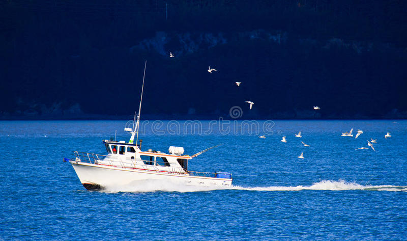 Download Ship go home stock image. Image of freedom, catch, ocean - 20366877