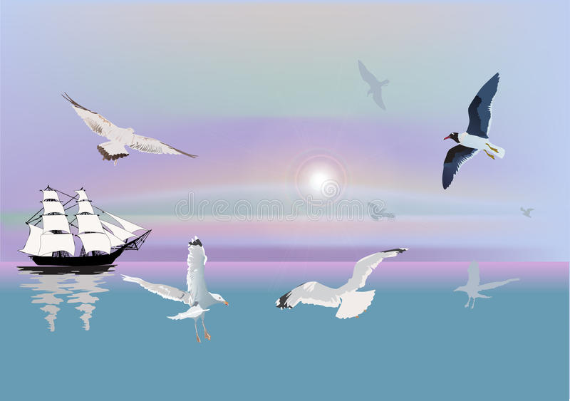 Download Ship and gulls at sunlight stock vector. Illustration of sketch - 19550450
