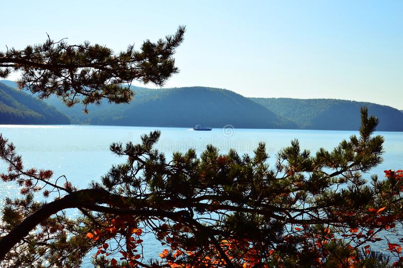 The ship sails across the lake. The Lake Baikal. Russia, East Siberia.Clear September day. Siberian pine in the foreground royalty free stock images