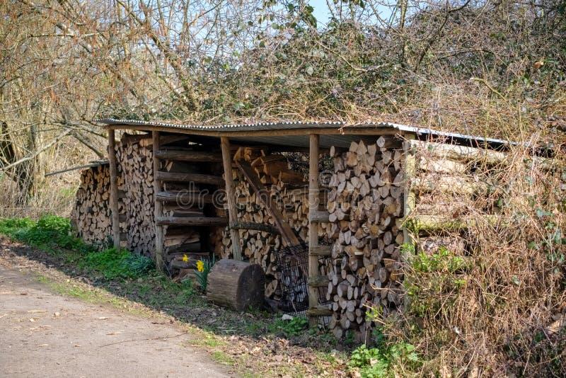 SHIPLEY, SUSSEX/UK AD OVEST - 16 MARZO: Deposito del ceppo sulla colata di Knepp immagine stock libera da diritti