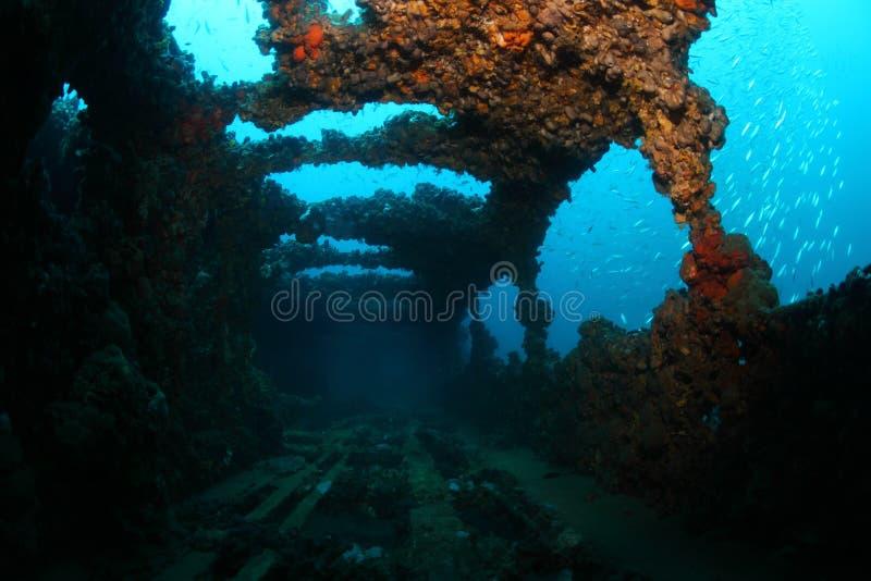 Shipwreck Baron Gautsch zdjęcie stock