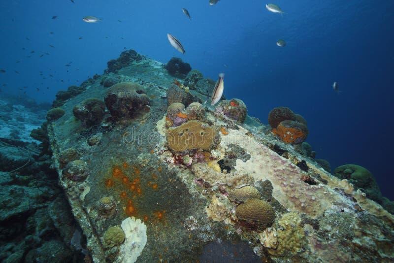 Shipwreck. stock photography