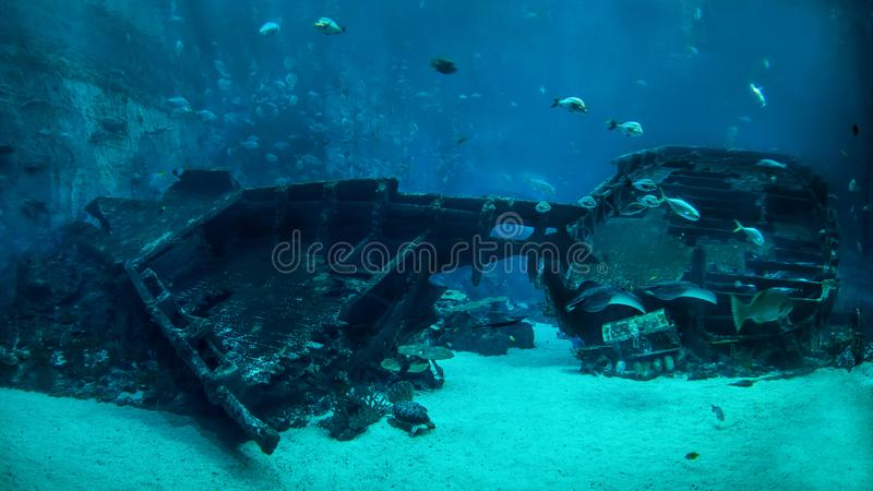 The shipwreck on the ocean floor royalty free stock photography