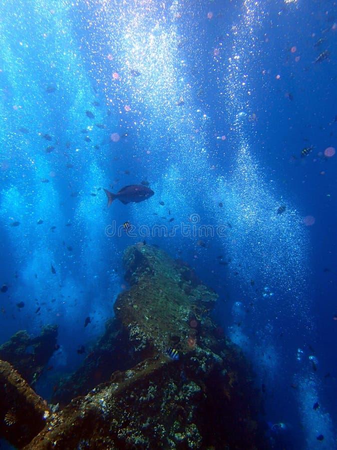 shipwreck USS swoboda z wiele nurków bąblami - Bali Indonezja Azja obraz stock