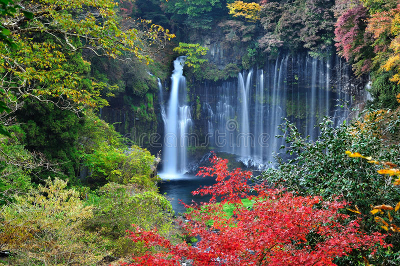 Shiraito Falls Japan Colorful Autumn. Shiraito Falls, Fuji-Hakone-Izu National Park Japan. Listed as one of the Japan's Top 100 Waterfalls stock photography