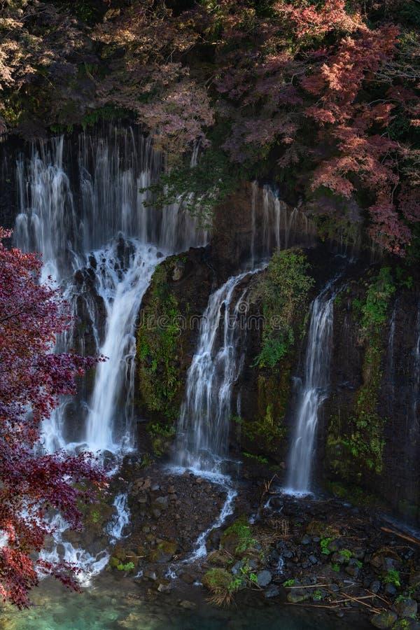 Shiraito tombe en automne photos libres de droits