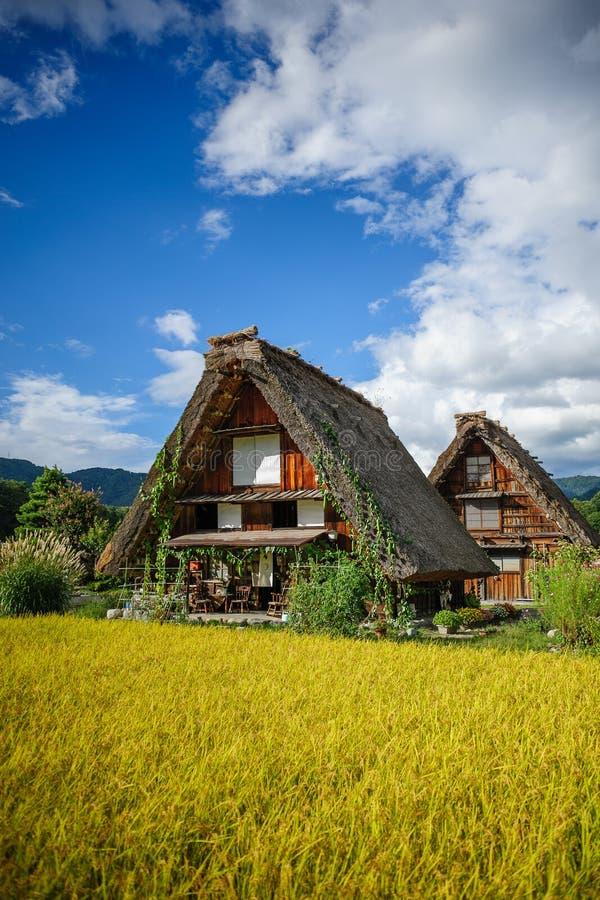 Shirakawa Dorf-Erntejahreszeit stockfotografie