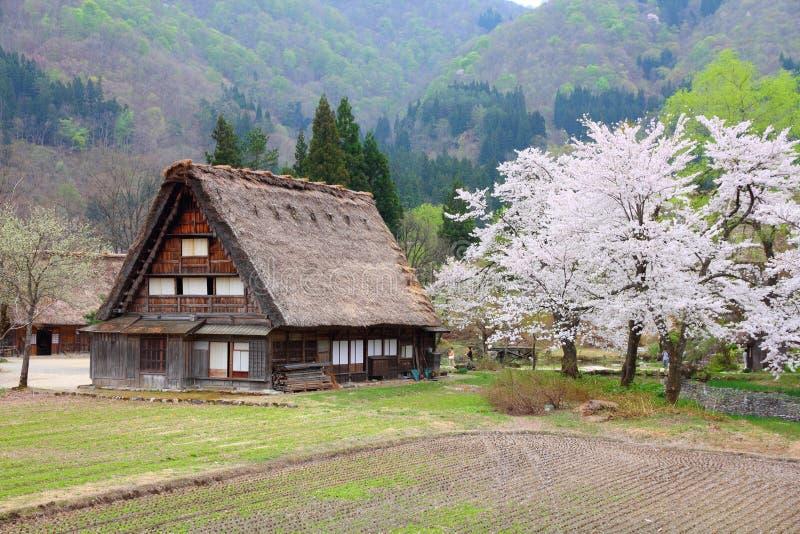 Shirakawa-ga, Japan stock afbeeldingen