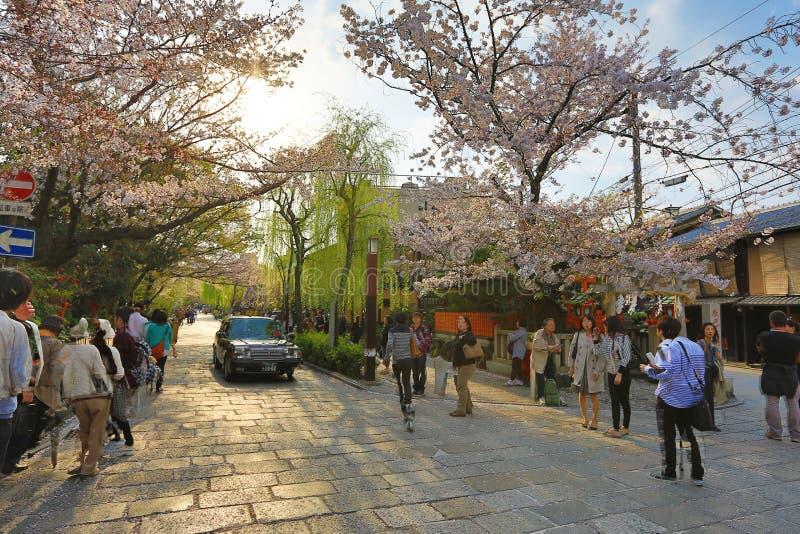 Shirakawa-minami Dori à Kyoto, Japon image libre de droits