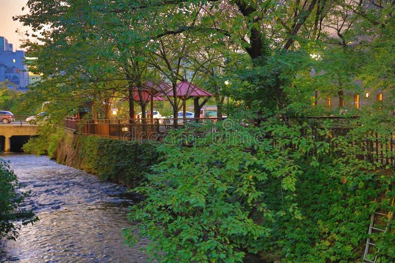 Shirakawa-Minami Dori in Kyoto, Japan stock afbeeldingen