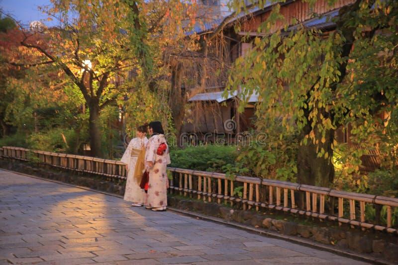 Shirakawa-Minami Dori in Kyoto, Japan stock foto's