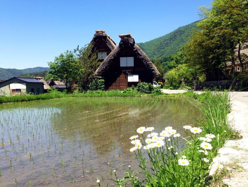 Shirakawa-vada fotografie stock libere da diritti