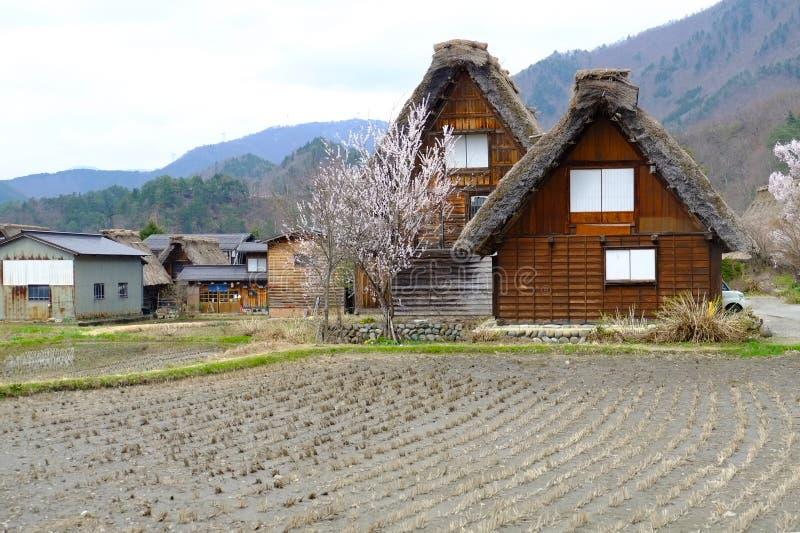 Shirakawago岐阜高山市日本 免版税库存照片
