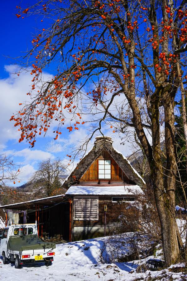 Shirakawago historisk by i Gifu, Japan royaltyfri foto