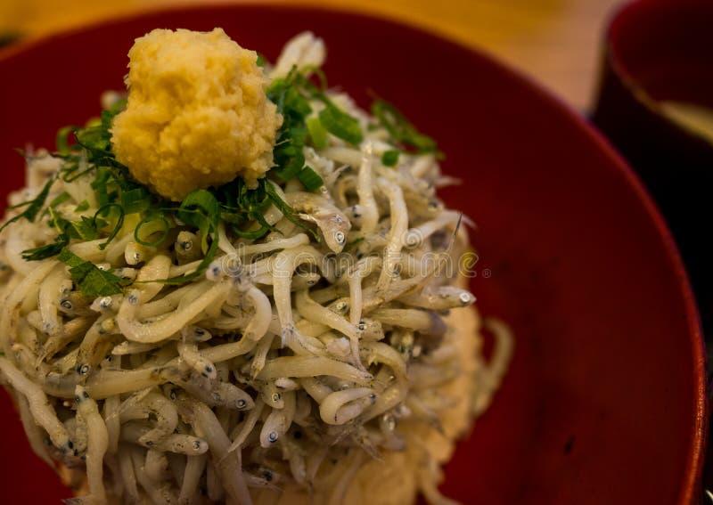 Shirasu donrice topped with Japanese small fish, Kamakura's famous food, Japanese food stock image