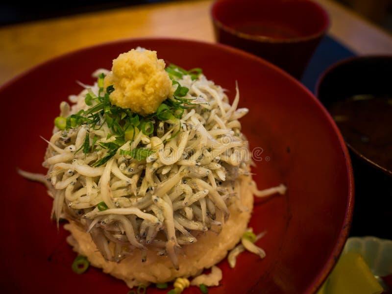 Shirasu donrice topped with Japanese small fish, Kamakura's famous food, Japanese food stock images