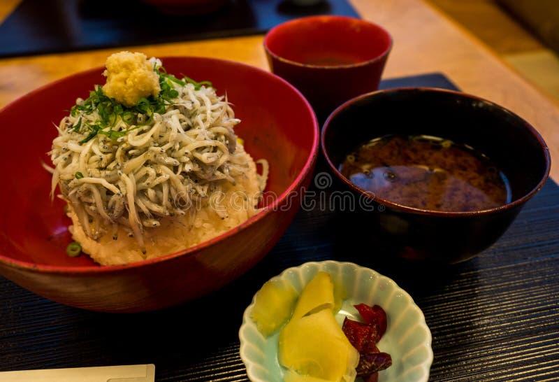 Shirasu donrice topped with Japanese small fish, Kamakura's famous food, Japanese food royalty free stock photos